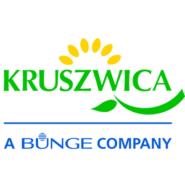 Kruszwica